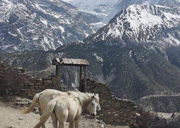 вера в Непале