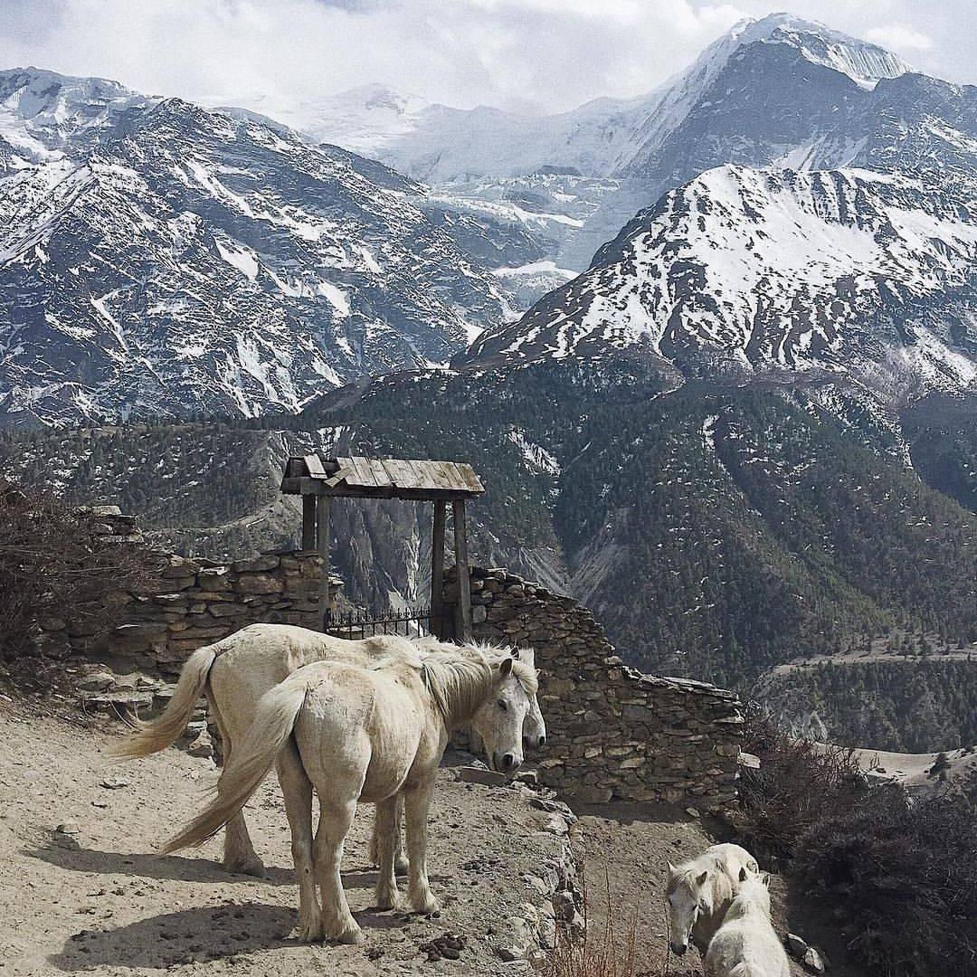 Во что верят в Непале