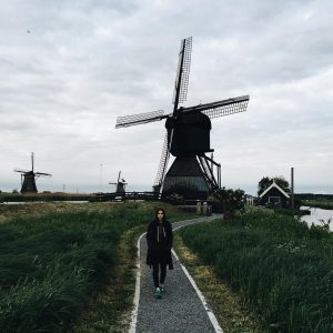 Средства связи в Нидерландах