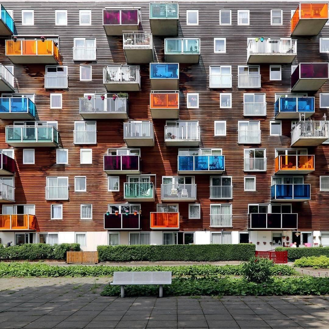 Обучение в Нидерландах