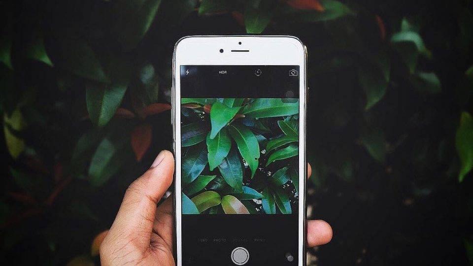 Whatsapp прекращает работу на некоторых смартфонах