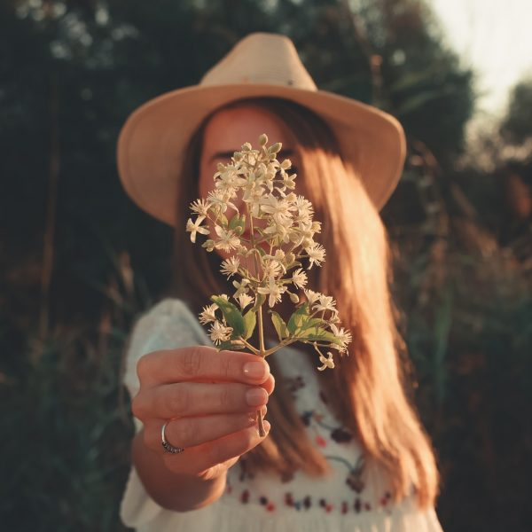 аллергии нацветение