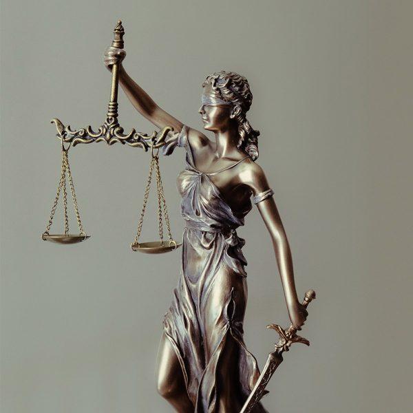 Лучшее юридическое образование в России